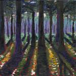 Forrest Shadows