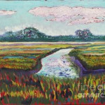 The Low Country Marsh